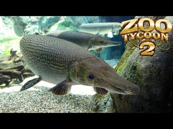 Zoo Tycoon 2 Alligator Gar Exhibit Speed Build