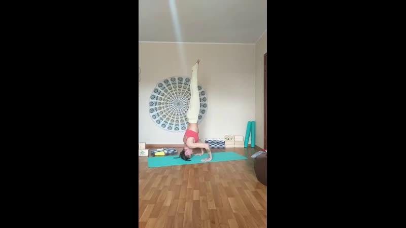 24 ЛД Силовая тренировка yogamix