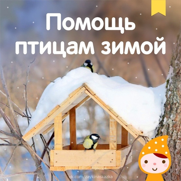 ПОМОЩЬ ПТИЦАМ ЗИМОЙ Покормите птиц зимой! Пусть со всех концов К вам слетятся, как домой, Стайки на крыльцо. Небогаты их корма. Горсть зерна нужна, Горсть одна и не страшна Будет им зима.