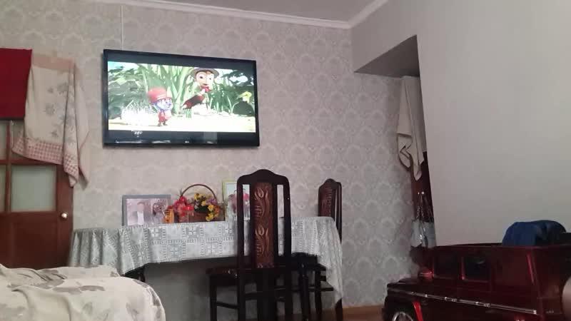 Бір сəттік тыныштық Опять карантин