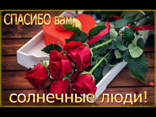 Моим друзьям с любовью, цветочного настроения,вам!Автор: Зоя Беликова