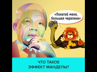Как эффект Манделы заставляет верить в то, чего нет   Москва 24