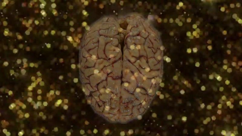 Здоровый Мозг, Медитация Абсолютно Здоровый Божественно Чистый Мозг
