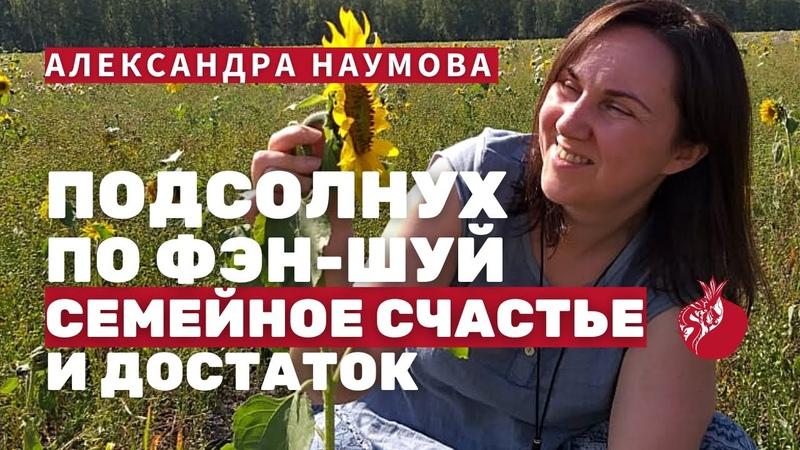 Подсолнух по Фэн-Шуй, что значит картина с Подсолнухами в доме по Фен-Шуй   Александра Наумова