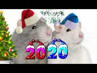 Новый год 2020 красивое музыкальное поздравление с новым годом в НОВЫЙ ГОД КРЫСЫ