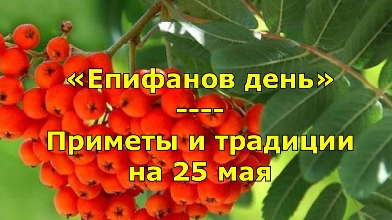 Народный праздник «Епифанов день» Приметы и традиции на 25 мая