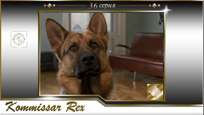 Komissar Rex 3x07 Комиссар Рекс 36 серия