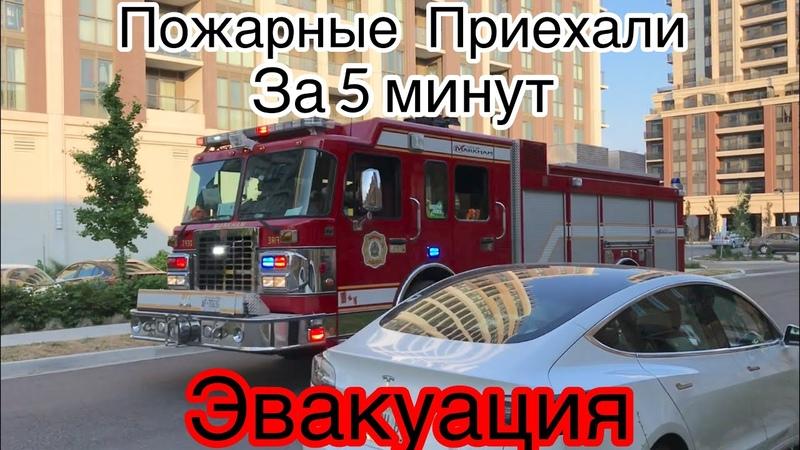 Сработала пожарная сигнализация в доме Как это происходит в Канаде Кто живет в моем доме