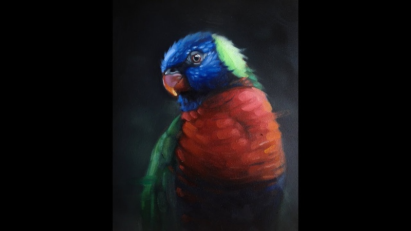 How to Paint a Lorikeet Bird - Oil Painting Time-lapse