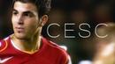 Cesc Fàbregas - The Arsenal Years (2003-2011)
