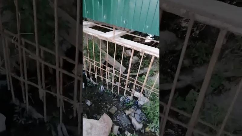 Слив сточных вод в Мысхако