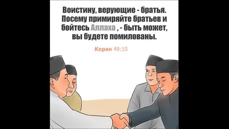 Не будьте партнерами товарищами друзьями будьте братьями