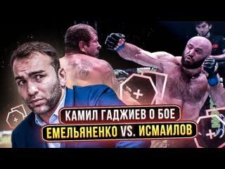 Емельяненко должен был понимать, на что соглашается,  Гаджиев о бое Александра против Исмаилова   FightSpace