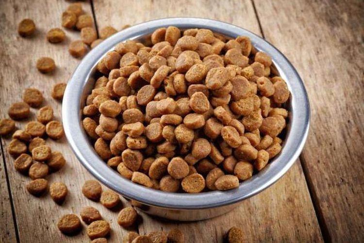 Что лучше: Сухой корм для собак или натуральный? Все ЗА и ПРОТИВ, изображение №1