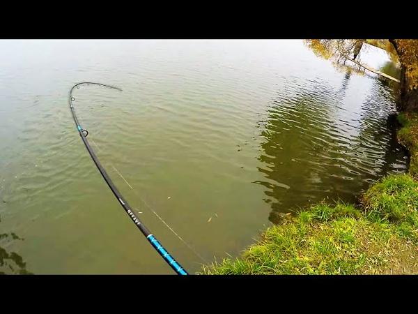 Рыбалка на спиннинг СТОИЛО СЮДА ЕХАТЬ Рыбалка на спиннинг осенью 2020 Ловля на спиннинг на реке Осень 2020 Речные монстры Рыбы много и разной РВУТСЯ ЛЕСКИ ГНУТСЯ БАГРЫ Революция в рыбалке Новый способ ловли рыбы Р