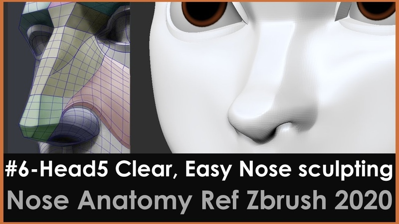 6 Head5 Clear Easy Nose sculpting Zbrush 2020 base on Nose Anatomy Ref Danny Mac Proko tutorial