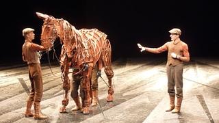 Gefährten/ War horse & Inside the horse -Theater des Westens Berlin -Tag der offenen Tür