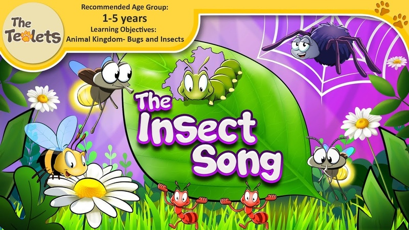 The Insect Song for Preschoolers I Bug Songs I Nursery Rhymes and Kids Songs I The Teolets