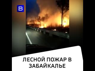Лесной пожар в Забайкалье