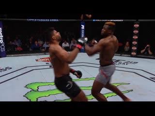 Лучшие нокауты в истории UFC ТОП-5