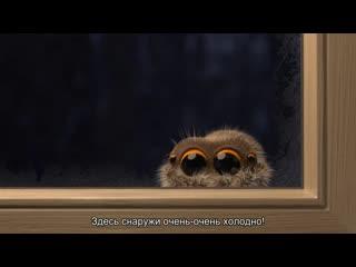 Паучок Лукас. Lucas the Spider (рус суб)