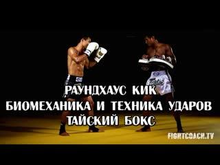 РАУНДХАУС КИК. БИОМЕХАНИКА И ТЕХНИКА УДАРОВ. ТАЙСКИЙ БОКС