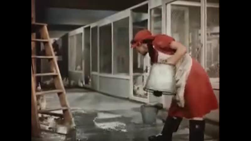 Песня Марине из фильма Стрекоза Лейла Абашидзе