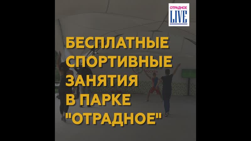 Бесплатные спортивные занятия в парке Отрадное