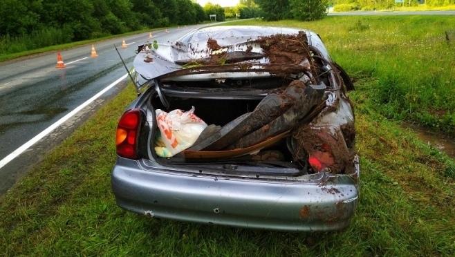 В Марий Эл две машины перевернулись в кювет, водитель «Лады Гранты» не выжил