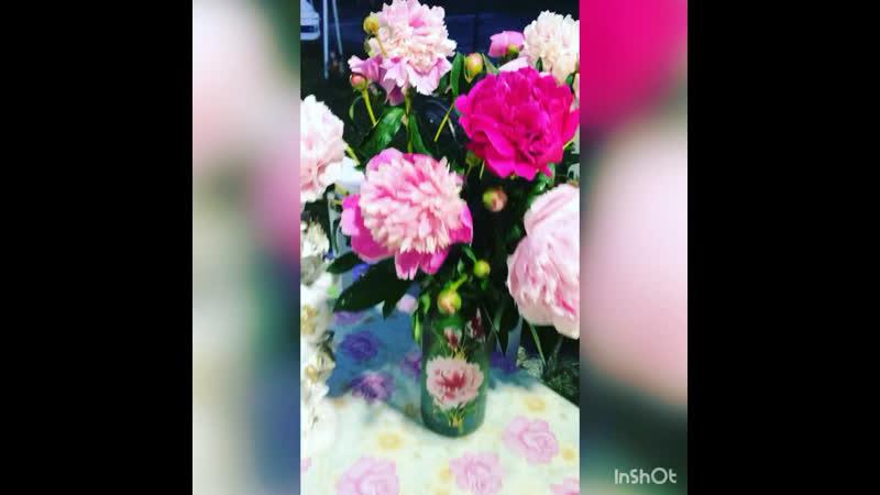Быть может от любви в моём саду цветут красивые цветы 😍