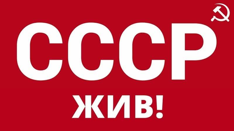 ☭ СССР ☭Россия 24 объясняет как поучить,паспорт,и права СССР