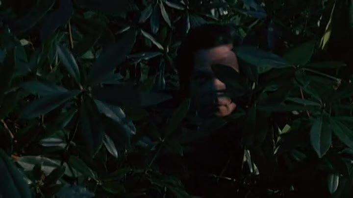 El ataúd La caja oblonga 1969