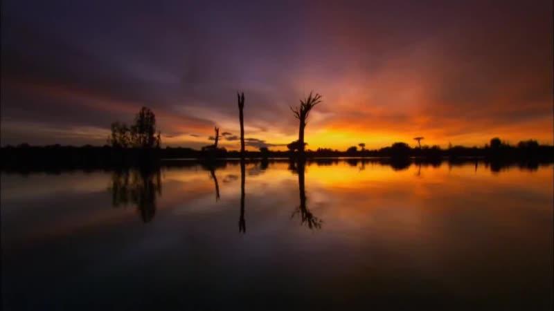 Дикая природа Амазонки 1 2 Колыбель жизни mp4