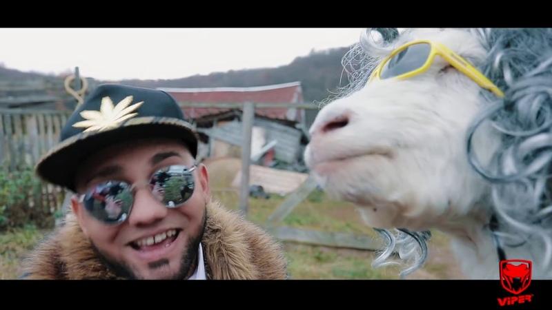Printu de la Cluj Capra video oficial