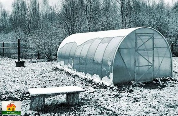 ГОТОВИМ ТЕПЛИЦЫ К ЗИМЕ После окончания вегетации теплицы надо подготовить к зиме. Убирают растительные остатки. Если на них заметны тля, белокрылка, паутинный клещ, признаки фитофтороза и т. п.,