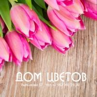 Фото профиля Алисы Цветочной