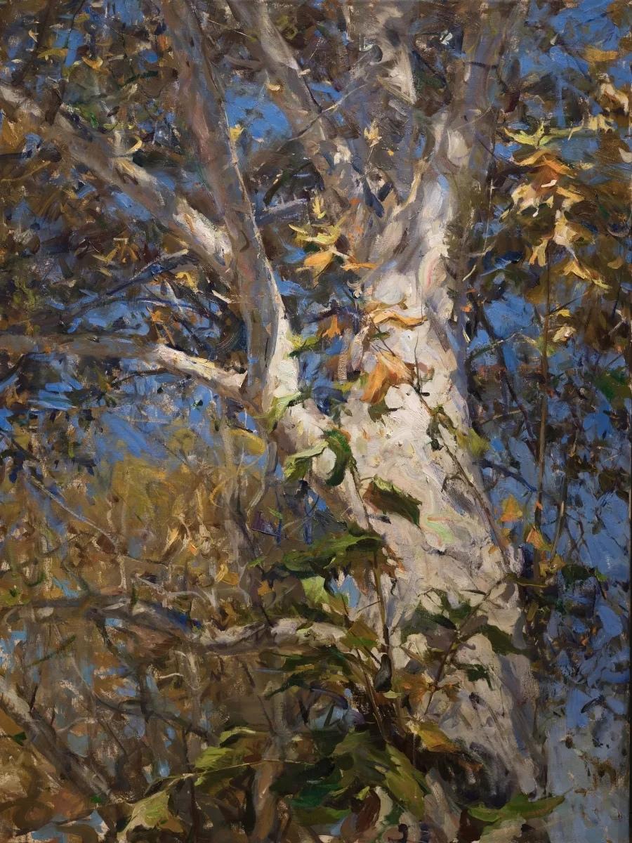 Американский художник Дерек Пеникс (Derek Penix) родился 29 декабря 1980 года в городе Талса, штат Оклахома.