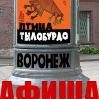 Логотип  Афиша Воронежа