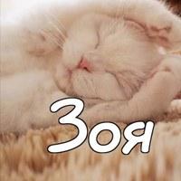 Фото профиля Зои Валиевой