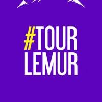 Логотип  ТурЛемур / Походы, активный отдых / Тюмень