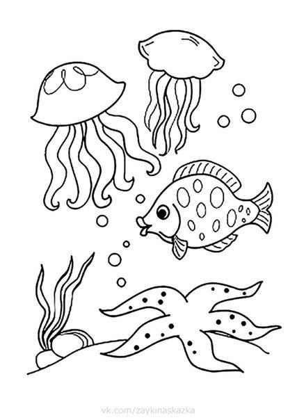 МОРСКИЕ ОБИТАТЕЛИ  Раскраски для детейРыбка рыбку догоняла,Рыбка хвостиком виляла,Ткнулась в брюшко догнала:Эй, подружка, как