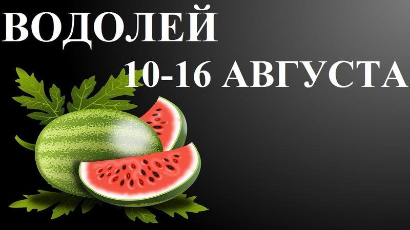 ВОДОЛЕЙ 10 16 АВГУСТА ГОРОСКОП ТАРО ОТ ЛИС ФИЗАЛИС