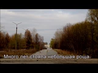 Челябинские активисты показали, как ради ТРК Алмаз вырубили лес в Ленинском районе