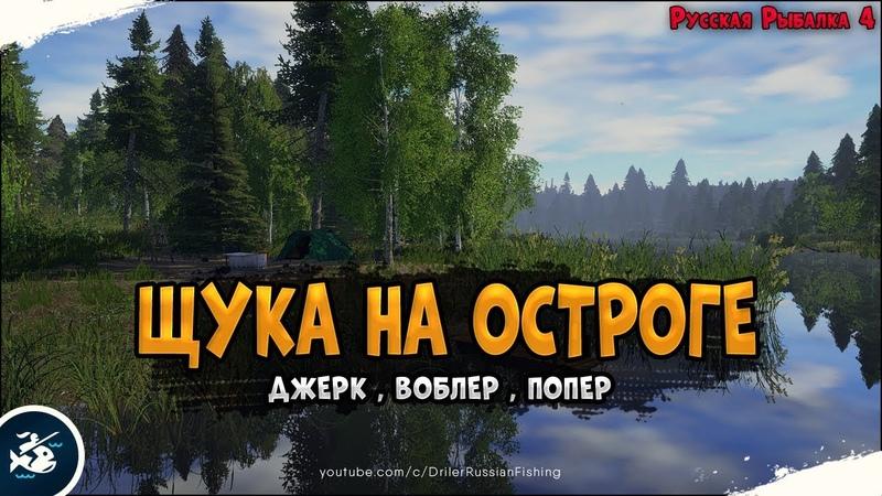 Щука на Старом Остроге • Закрывай пока раздает • Driler - Русская Рыбалка 4