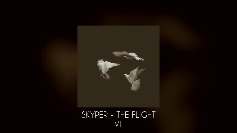 Skyper - The Flight VII