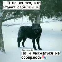 Мага Тлешов