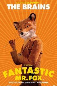 Foxs Mister