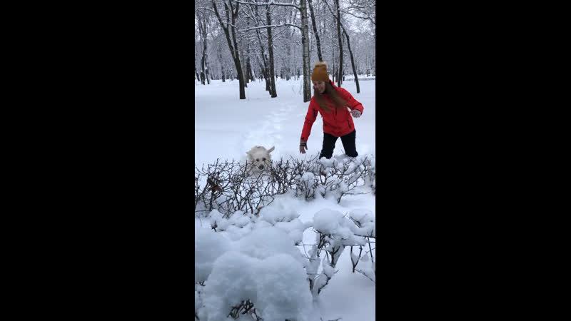 Зима в Питере😅