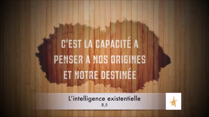 📋 Qu'est-ce que l'Intelligence Existentielle ? {Howard Gardner} ✔2 🇫🇷
