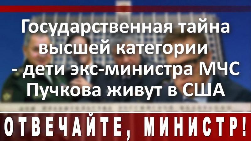 Государственная тайна высшей категории дети экс министра МЧС Пучкова живут в США